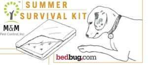 bed bug dog, bed bugs, summer, bed bug tips, bedbug.com, m&m environmental