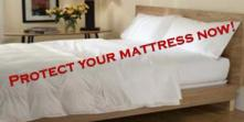 protect a bed from bed bugs, bed bugs, bed bug proof, buy bed bugs killer