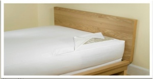 bed bug mattress encasement